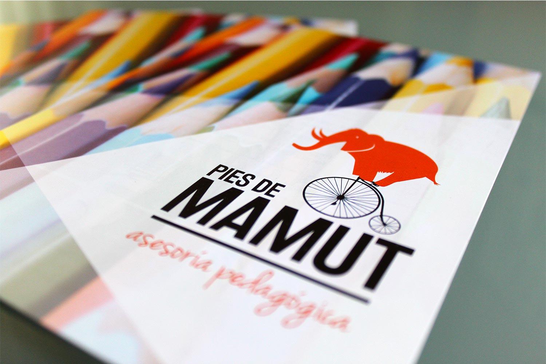 Flyer para Pies de Mamut - SOYTUTIPO