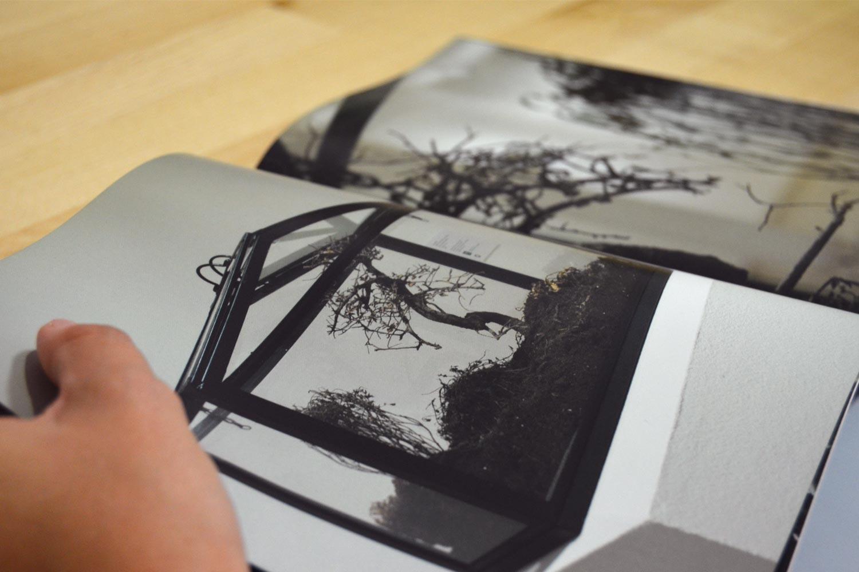 Páginas del catálogo de exposición