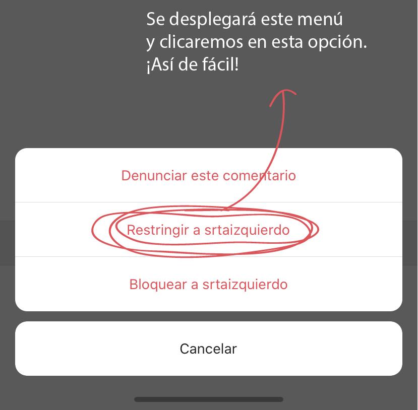 Restricción de usuarios en Instagram - SOYTUTIPO