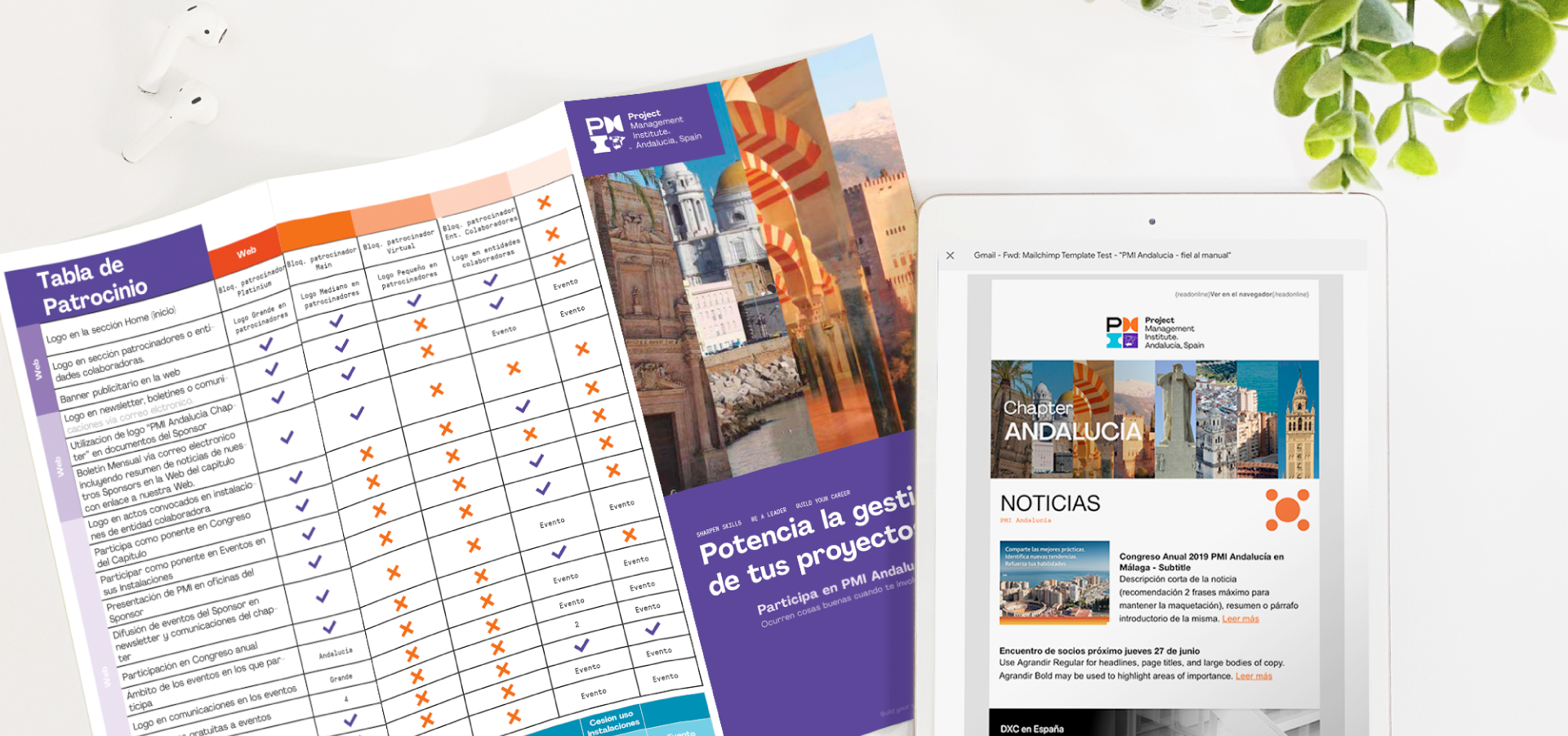 SOYTUTIPO-portfolio-Diseño de flyer y newsletter -pmi